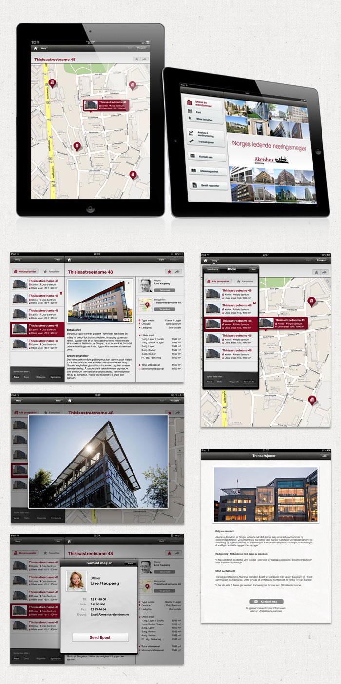 AE iPad App
